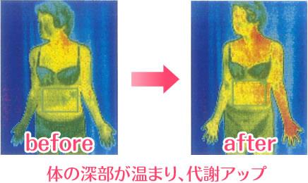 第三者機関による検証で深部が温まり代謝がアップすることが実証