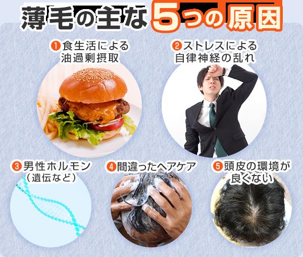 薄毛の主な5つの原因